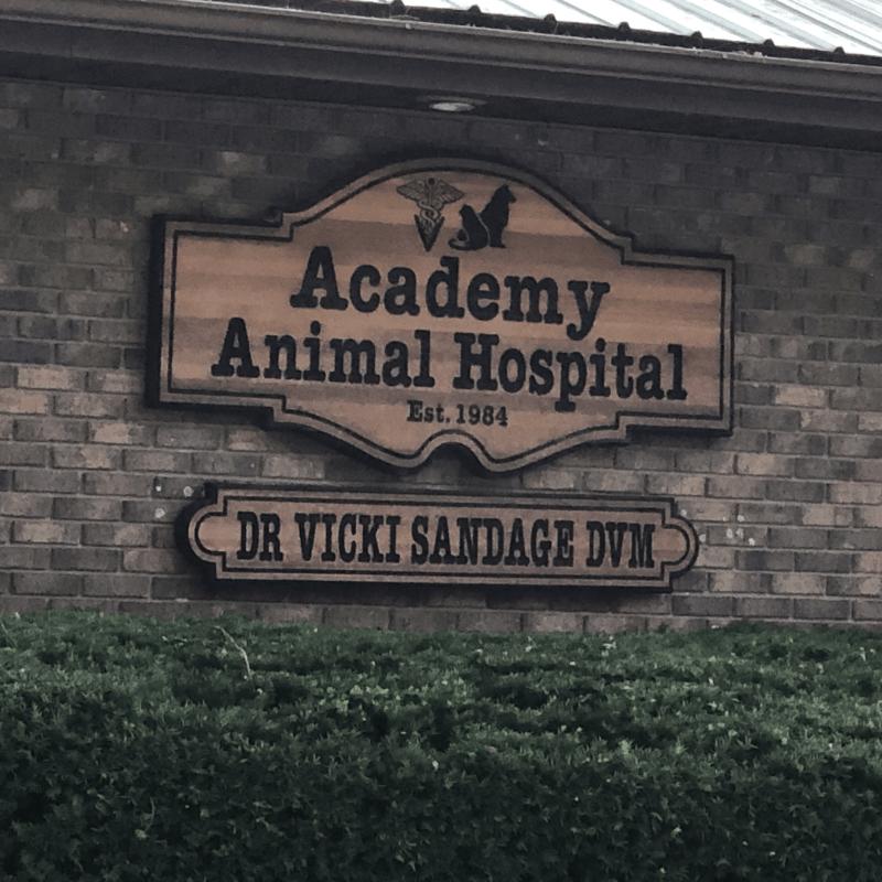 Academy Animal Hospital